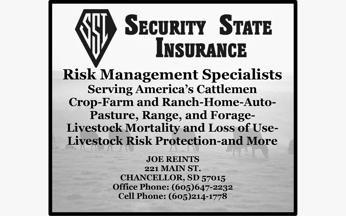 security state insurance